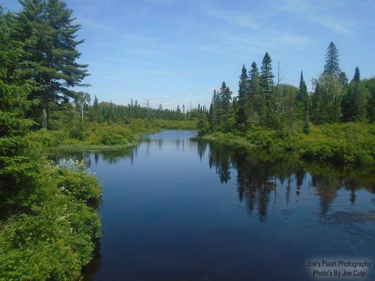 Summer reflections on the Seguin river taken off South Seguin Estates Road in seguin Township
