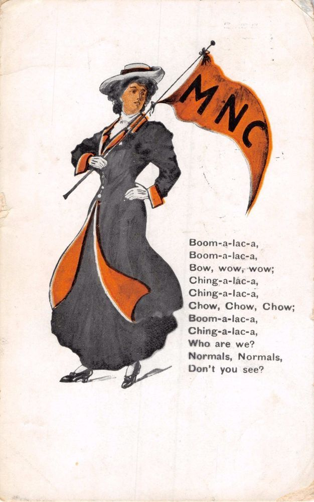 DILLON MONTANA NORMAL COLLEGE~CHEERLEADER~MNC PENNANT~SONG POSTCARD 1907