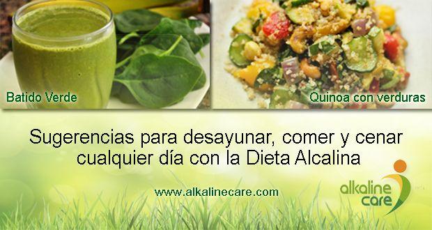 Platos-alcalinos