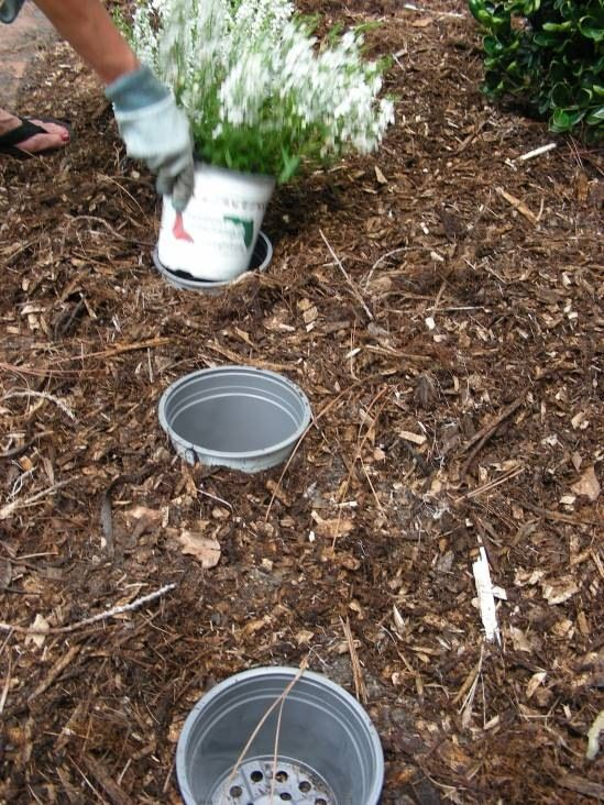 Pot-in-Pot Gardening: Bury an empty pot to function as a sleeve then drop in plants growing in the same size pot.