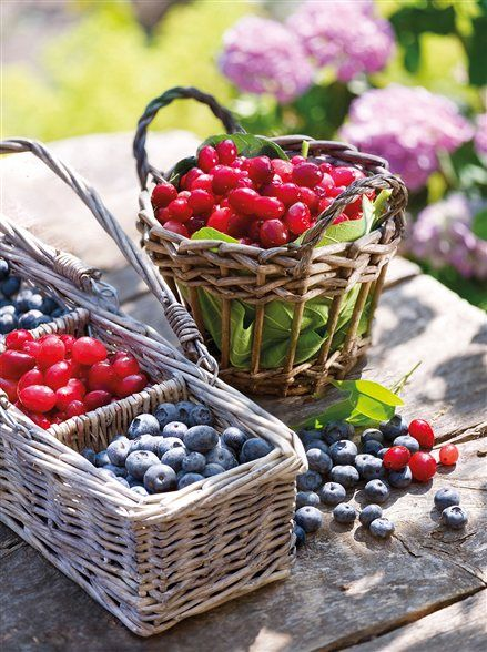 Fresh berries, baskets and country living!