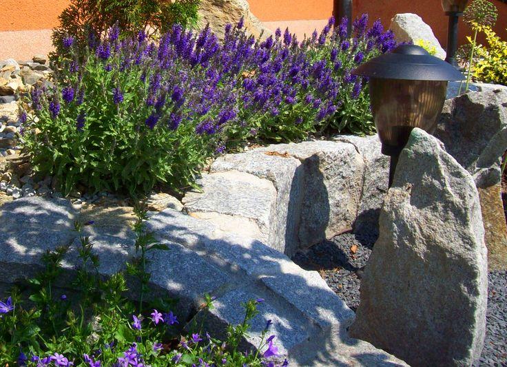 Zdjęcia z natury | Zaczarowany ogród