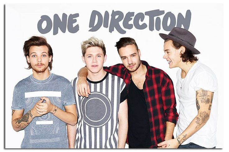 meet greet one direction 2015 without zayn