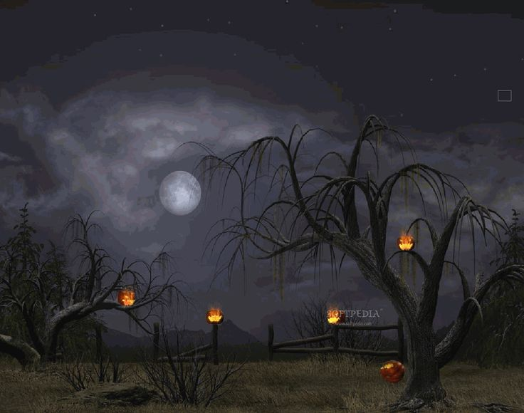 Images Of Halloween Wallpapers Desktop Backgrounds SC
