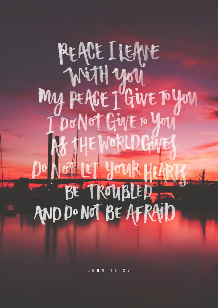 "mercy-n-grace: "" ""Do not be afraid…"" // John 14:27 "" John 14:27 (NIV) - Peace I leave with you; My peace I give you. I do not give to you as the world gives. Do not let your hearts be troubled and do not be afraid."