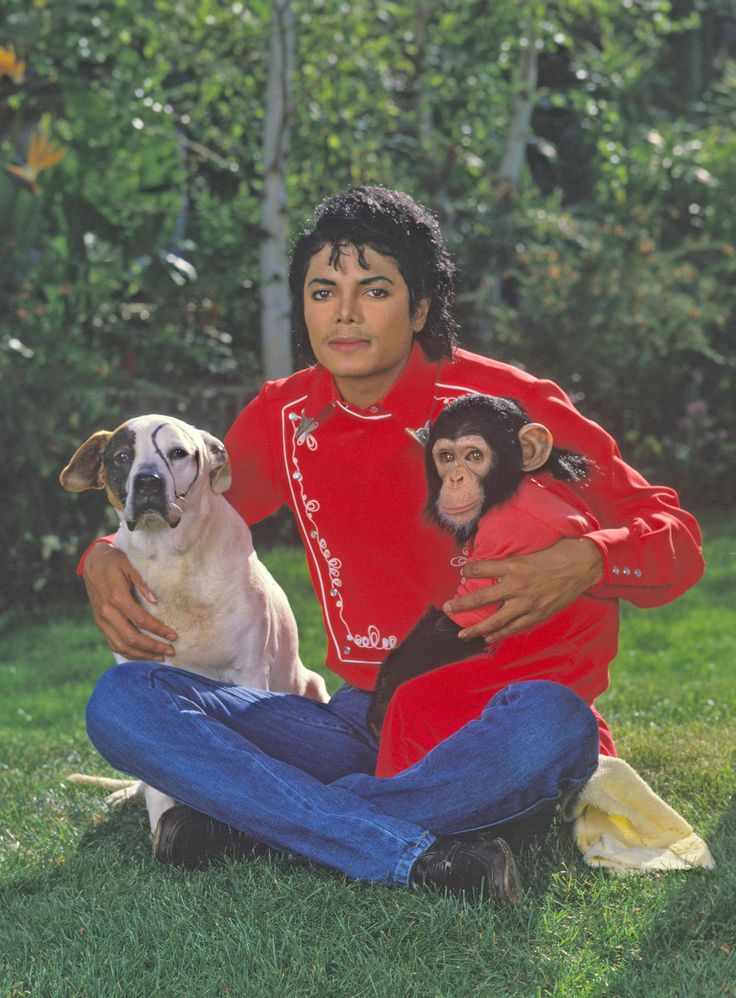 #Michael and his animals