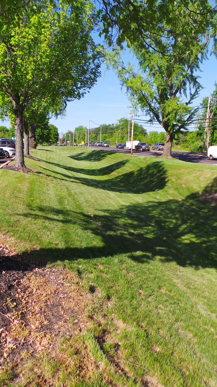 slowing storm water with