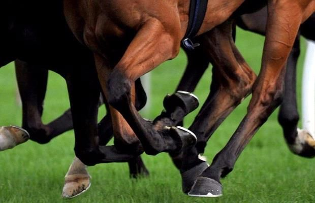 Kilmore trainer Kate Goodrich will face Victoria's Racing Appeals and Disciplinary Board to answer a charge of obstructing stewards during an attempted race day inspection at her stable.