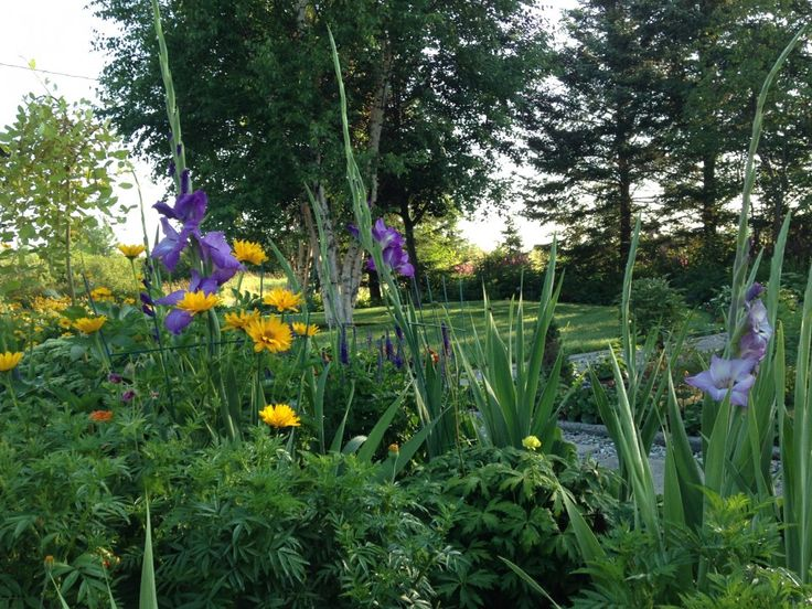 Clarisse Vachon participe au décor | Projets | CULTURAT Étant une passionnée d'horticulture, j'ai toujours eu à cœur l'embellissement de mon environnement autant chez moi que chez mes proches. C'est un passe-temps fort agréable, exigeant en temps et en énergie, mais je suis toujours fière et heureuse du résultat. Je ne suis pas la seule qui en profite, pour moi c'est un havre de paix. Merveilleux! La nature!