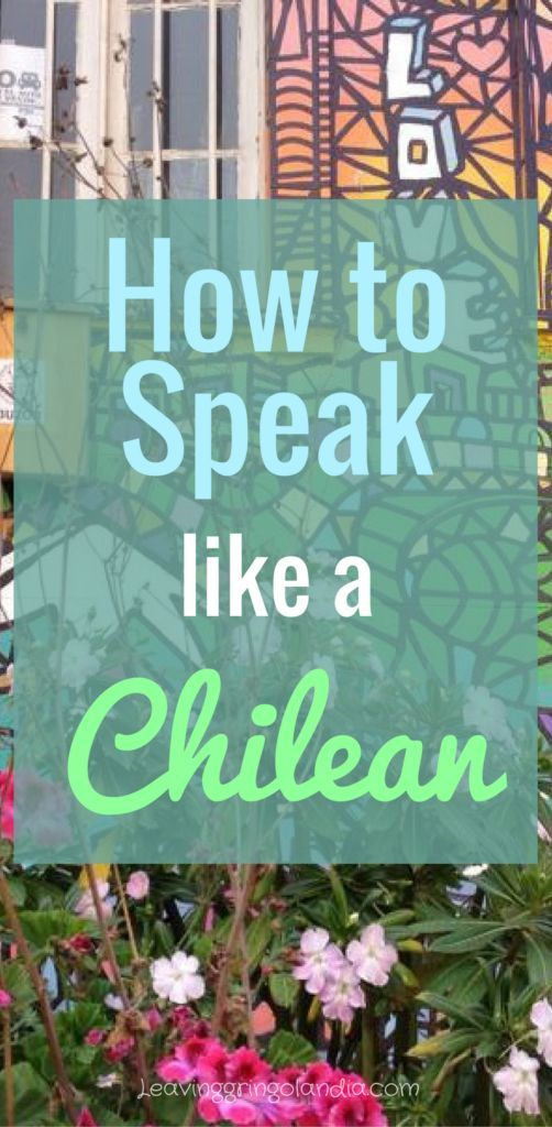Chilean spanish: here's your ultimate guide to chilean clang you should know when you travel Chile!
