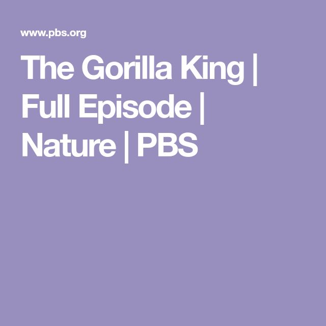 The Gorilla King | Full Episode | Nature | PBS