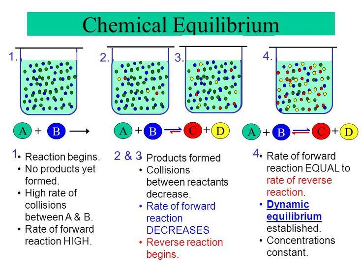 Chemical Equilibrium A B + A + C + B D A + B C + D 1. 4. - ppt video online download