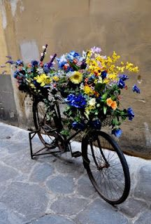 Spring has sprung bicycles with flower baskets pinterest