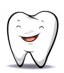 Marudhar dental clinic provides dental solutions to local and international client at reasonable price.