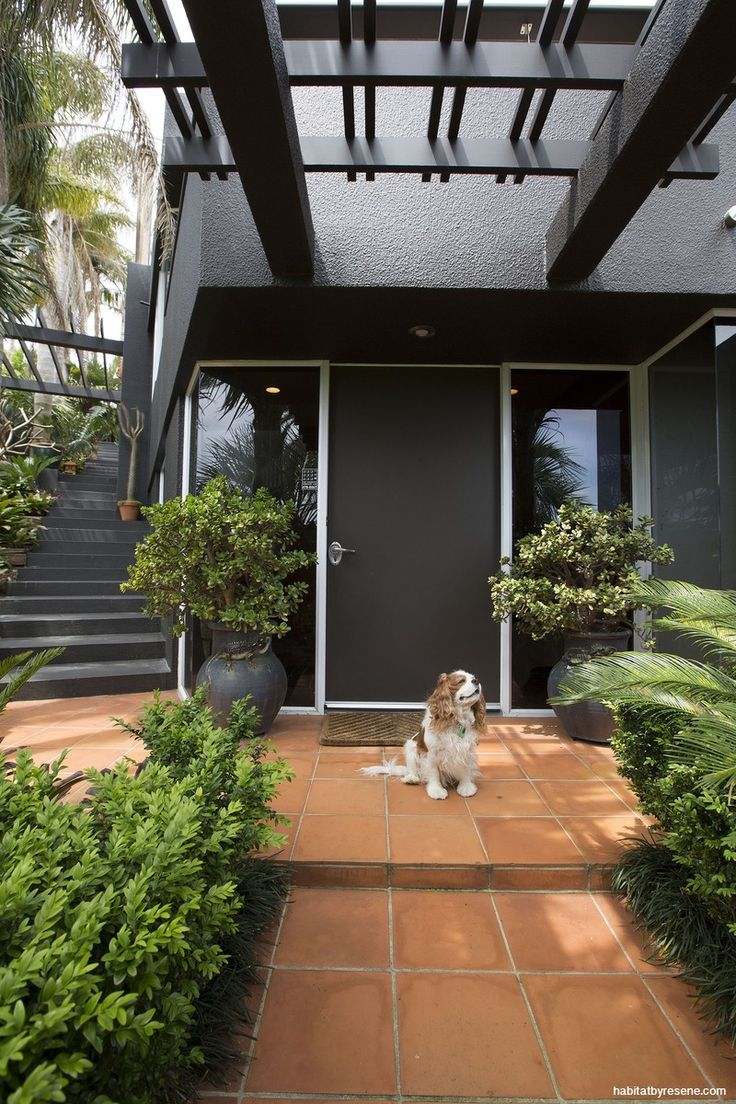 A far cry from its 1980s beginnings, Fraser and Sandy's home has been given a contemporary facelift with a new scheme in Resene CoolColour Bokara Grey, with ...