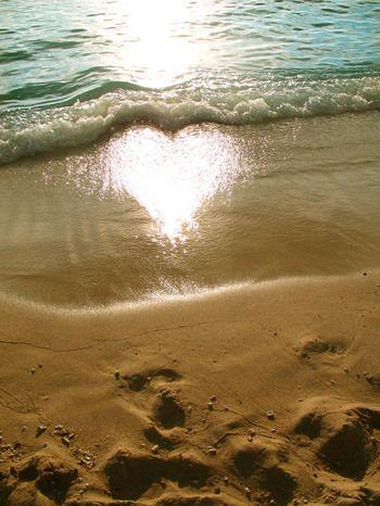 一瞬の波打ち際にできた、ハート型の太陽の光。 白く光るまぶしさと、打ち寄せる波で消えてしまう儚さにきゅんとなります。