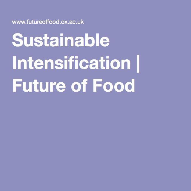 Sustainable Intensification   Future of Food