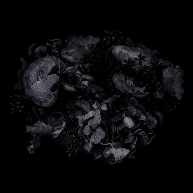 "Saatchi Art Artist Johann Darcel; Photography, ""FLOWER - Limited Edition 1 of 3"" #art"