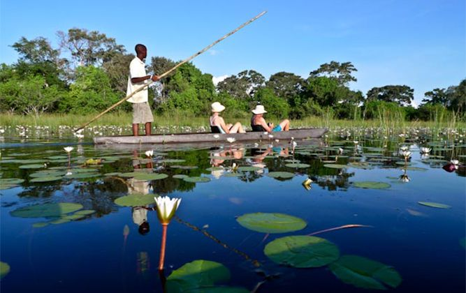 6-night Okavango Delta Budget Safari