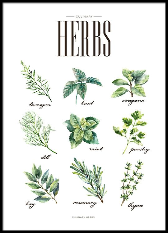 Print with herbs for the kitchen