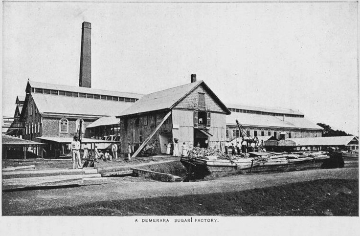 Demerara Sugar Factory in 1916 (date provided by the