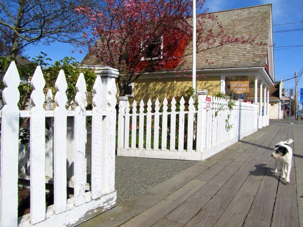 Steveston Village Museum in Richmond BC by RayVanEng, via Flickr