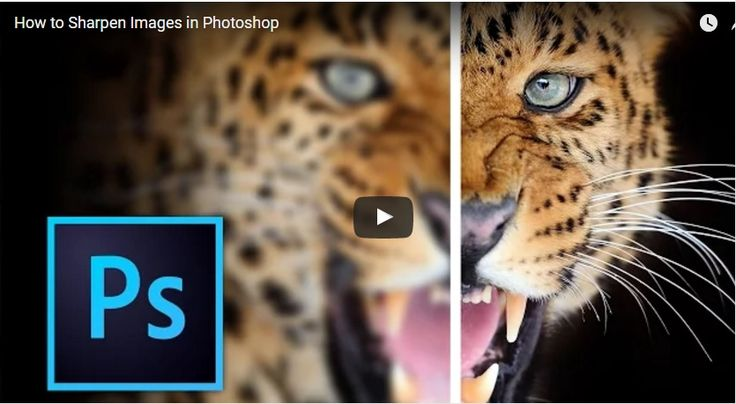 Know the various methods of sharpening a photo in Adobe Photoshop and how to implement them properly. In this tutorial you will also...