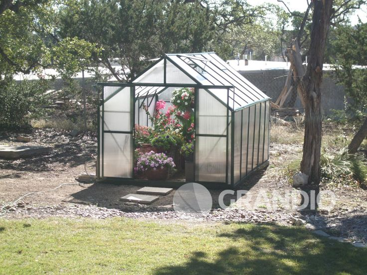Grandio Ascent 8 8x8 Hobby Greenhouse Hobby Greenhouse Greenhouse Gallery