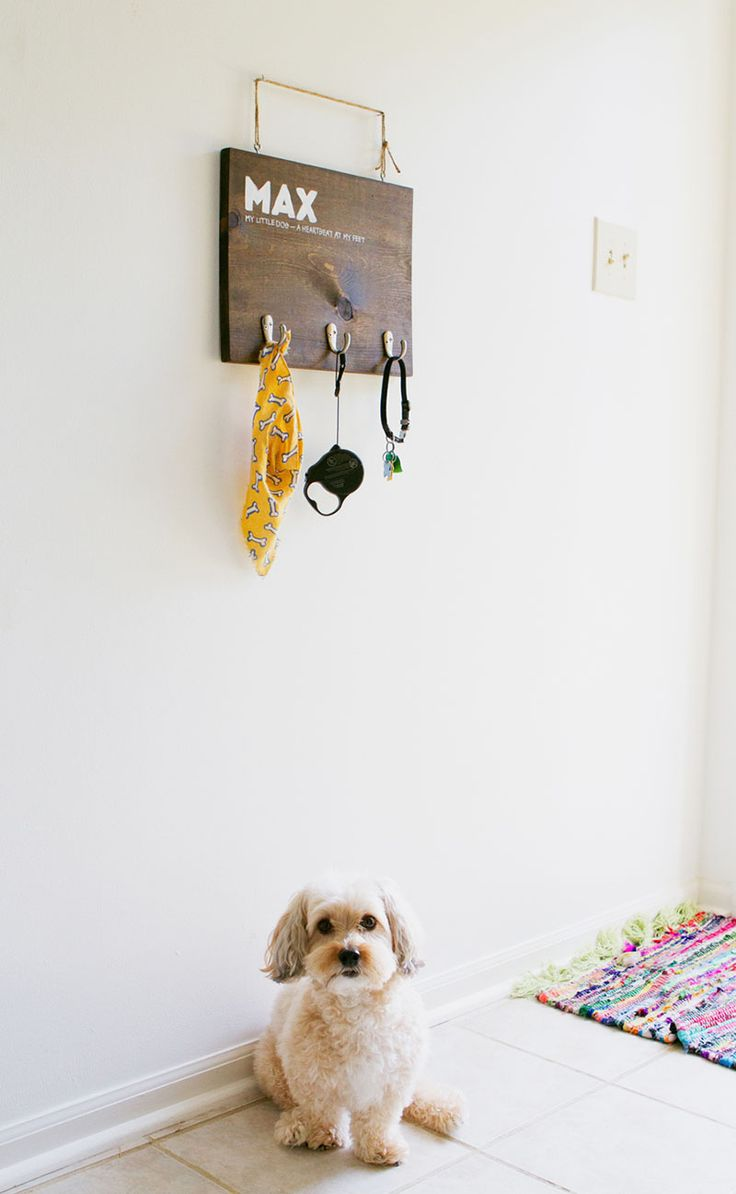 Dog Bathroom Accessories 17 Best Images About Diy Dog Projects And Ideas On Pinterest For
