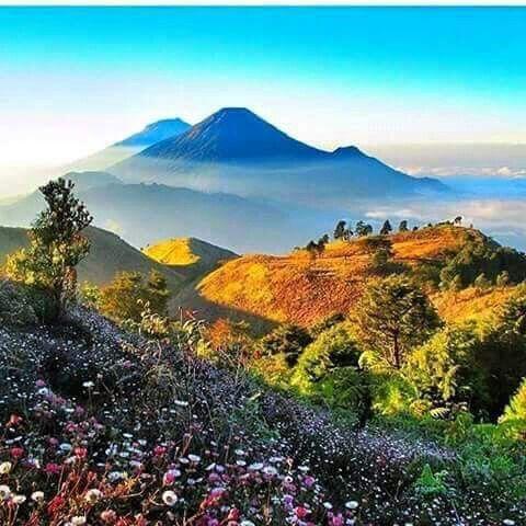 Mount Prau, Dieng Wonosobo Central Java