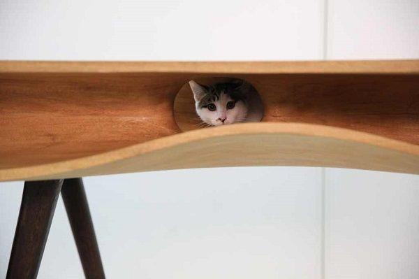 CATable un tavolo parco giochi per i gatti | DVERSO