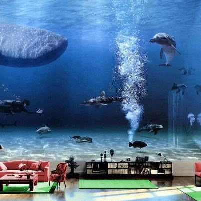 bill gates living room aquarium inside bill gates house pictures interior and exclusive 21904