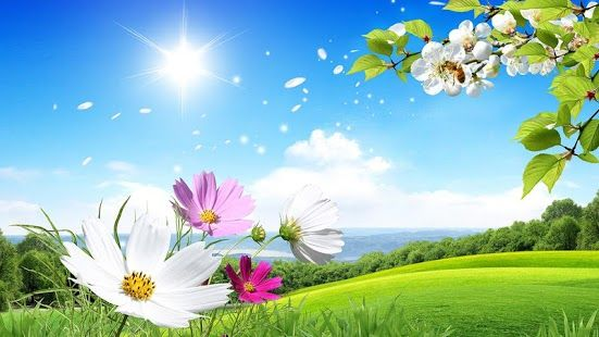 Top Android Spring Live Wallpaper – Spring Live Wallpaper Free Download