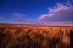 LAGUNA CEJAR Salida hacia la laguna salada de Cejar, ubicada a 20 km. Aprox. de San Pedro de Atacama, por camino de tierra en regulares condiciones, situado en el centro del Salar de Atacama a 2.600. - mts de altitud, esta laguna es de gran belleza escénica con agua de color calipso y rodeada de sales de variadas formas..