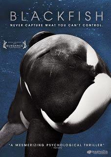 Blackfish documentary on sale on dvd