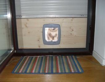 Balkon Katzentür, Katzenklappe für den Zugang ins Freie  Garten,Balkon,Katzenklappe,Balkontür,Katzentür,katzenfreigang
