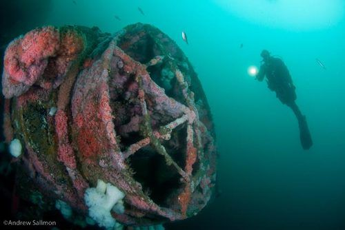 Humboldt for Wreck Weekend - San Diego: 12/02/17-12/03/17; Sat board 12:30p - ADVANCED!