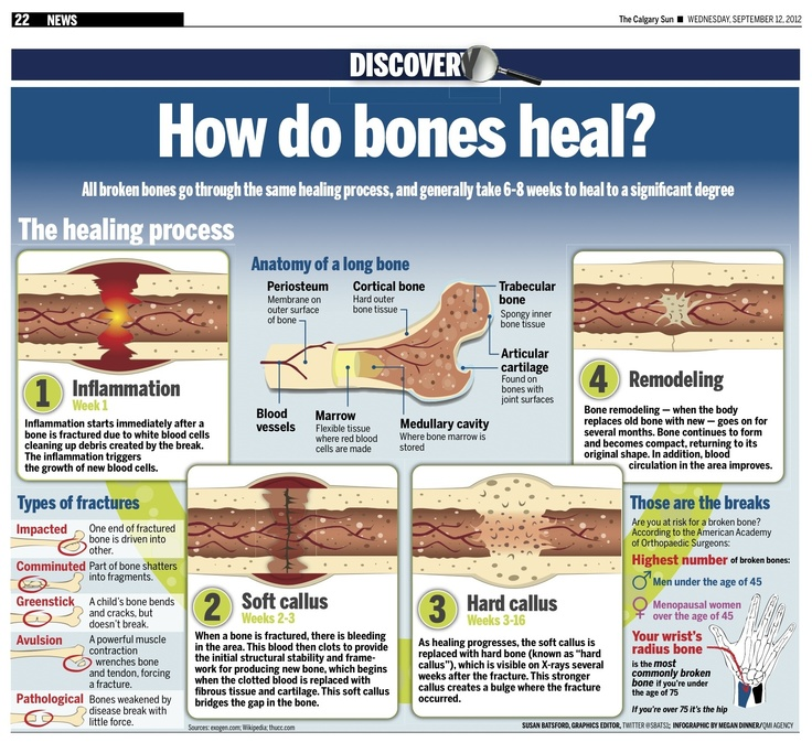 How do bones heal? All broken bones go through the same healing process, and generally take 6-8 weeks to heal to a significant degree