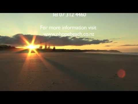 Ohope Beach TOP 10 Holiday Park | ideal beachfront accommodation close to Whakatane