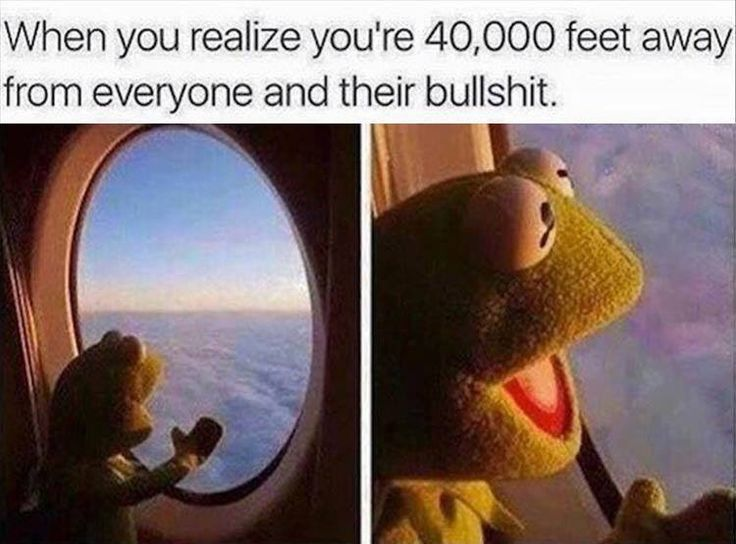 When you realise.. #funny #Kermit the frog humour | follow sophieeleana