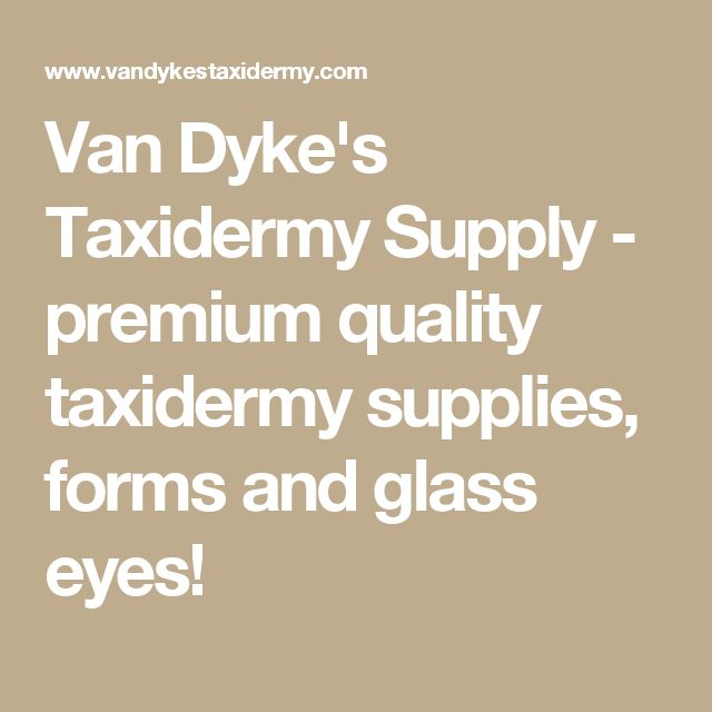 Van Dyke's Taxidermy Supply - premium quality taxidermy supplies, forms and glass eyes!
