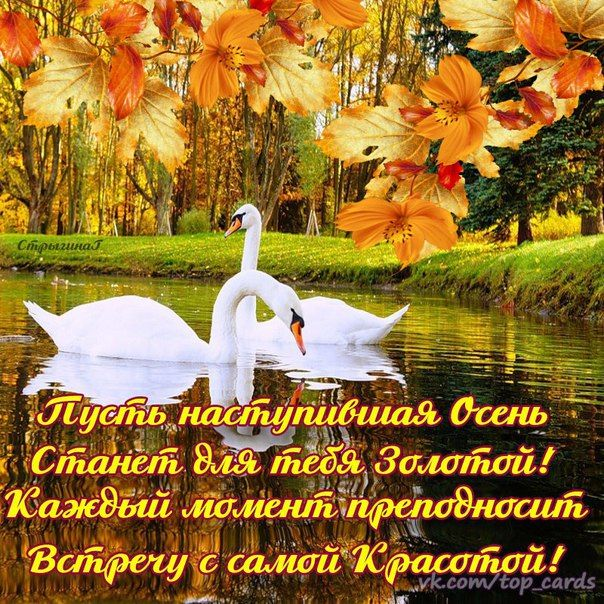 Гости открытка, открытки осень золотая с пожеланиями доброго утра