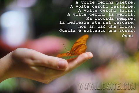 A volte cerchi pietre. A volte cerchi farfalle. A volte cerchi fiori. A volte [..] Osho #Osho, #saggezza, #ricerca, #bellezza, #liosite, #citazioniItaliane, #frasibelle, #ItalianQuotes, #Sensodellavita, #perledisaggezza, #perledacondividere, #GraphTag, #ImmaginiParlanti, #citazionifotografiche,