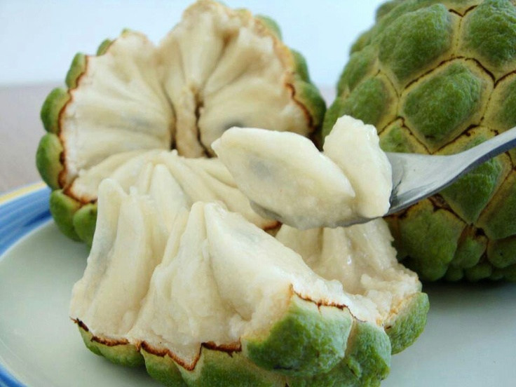Chirimoya my favorite fruit from Chile (error: PERU).. so sweet and yummy :) http://es.wikipedia.org/wiki/Annona_cherimola