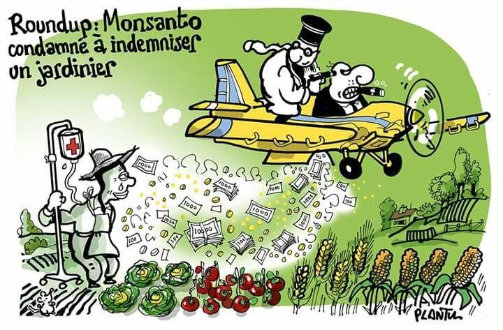 Plantu 2018 8 13 Pesticides Monsanto Condamne Le Dessin Du