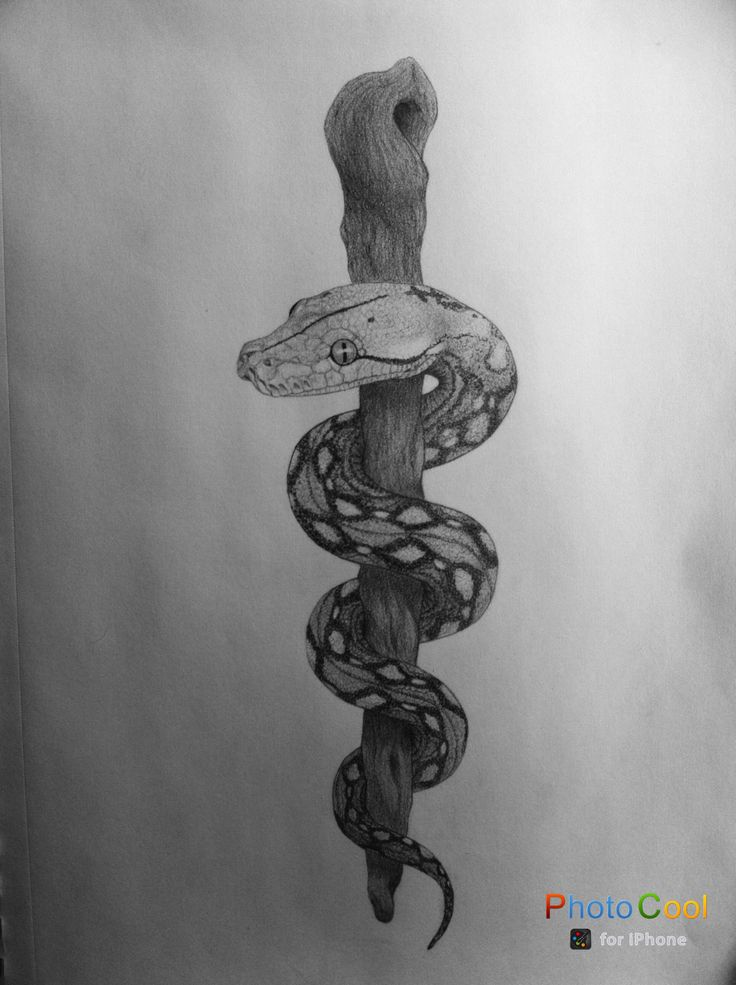 Rod of Asclepius by LauraStephenson1979.deviantart.com on @DeviantArt