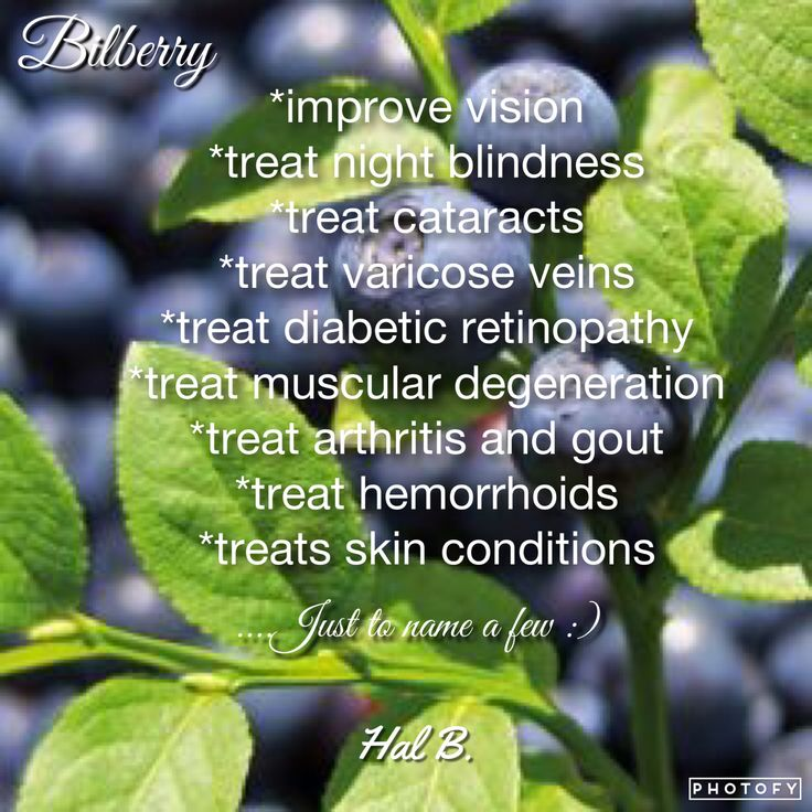 """Bilberry, One of the many amazing shakeology ingredients!  This month I'll be listing off all the antioxidant ingredients """"Red Super foods"""". Which help reduce oxidative damage in the body caused by free radicals. Oxidative damage is a major cause for aging conditions such as heart disease, high blood pressure (which can lead to stroke) dementia, and arthritis. Find out more about all the amazing benefits of Shakology here: www.shakeology.com/embracethestruggle"""