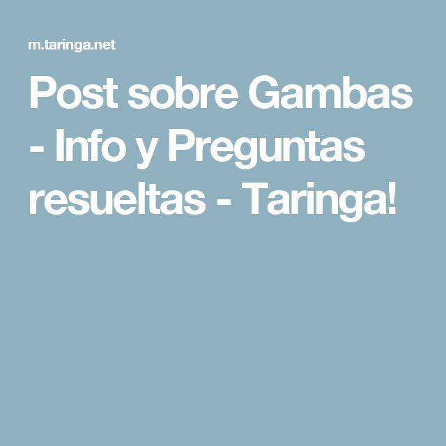 Post sobre Gambas - Info y Preguntas resueltas - Taringa!