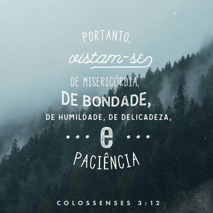 Vocês são o povo de Deus. Ele os amou e os escolheu para serem dele. Portanto, vistam-se de misericórdia, de bondade, de humildade, de delicadeza e de paciência. Colossenses 3:12