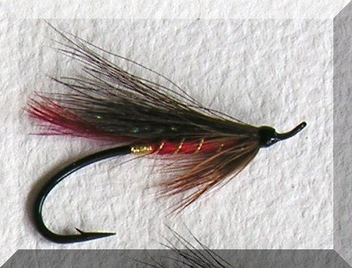 Red Abby Salmon Flies Pinterest Red